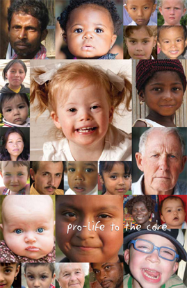 Picture of Pro-Life to the Core
