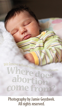 Picture of 2014 Bulletin Insert - Where does abortion come from?