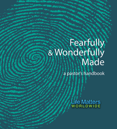 Picture of Fearfully and Wonderfully Made (pastor's handbook)