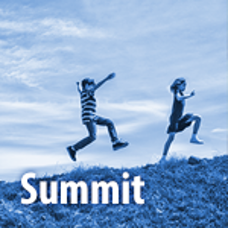 Picture for category Summit