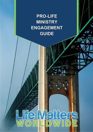Picture of Pro-Life Ministry Engagement Guide